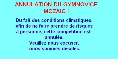 Gymnovice et Mozaïc-gym le 4 décembre à Bellegarde (MAJ 30/11)