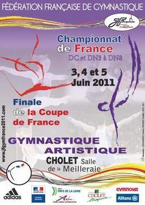 Championnat de France DN 3 à 8 et DC GAM GAF à Cholet Les résultats