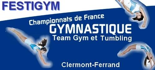 FESTIGYM à Clermont les 11/12/13 mai 2012 - Résultats