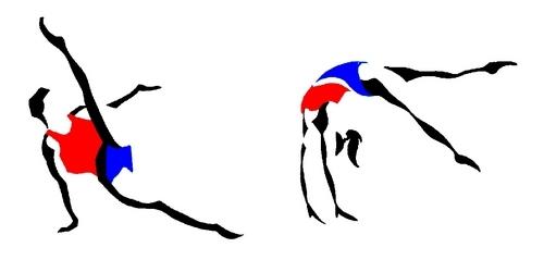 Championnat régional Individuel Montbrison - Gymnastique Artistique - 1/2/3 Mars 2013 et coupe de France GAM