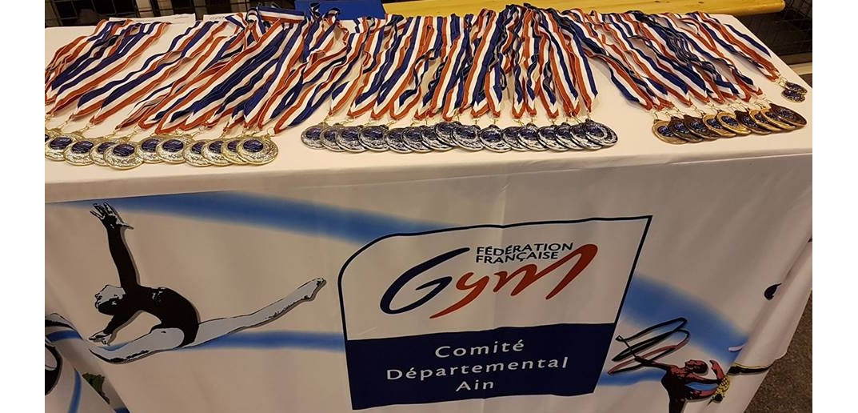 Sélection départementale des individuelles GR 2017 les résultats