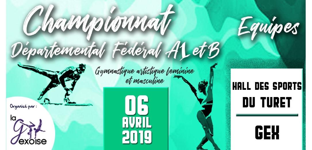 Championnat départemental Equipes GAF GAM fedéral A1 et B à Gex Résultats