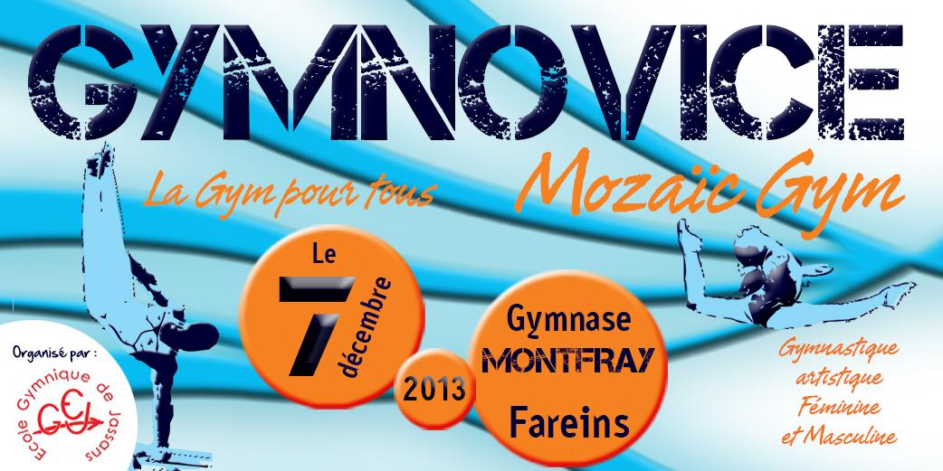 Gymnovice 2013 à Jassans/Fareins Résultats