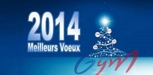 Meilleurs vœux !!