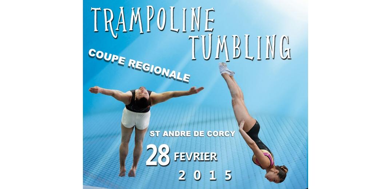 Coupe régionale Rhône-Alpes de trampoline et tumbling